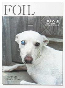 foil1.jpg